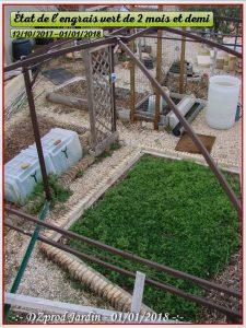 Test engrais vert hivernal à 75 jours - vesce et vesce et blé - dzprod Jardin - 01-01-2018