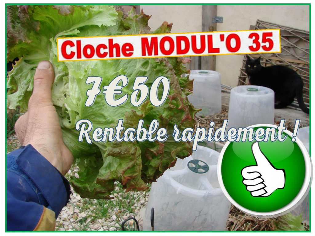 Cloche de jardin modulo 35 rentable rapidement - MV industrie - DZprod Jardin