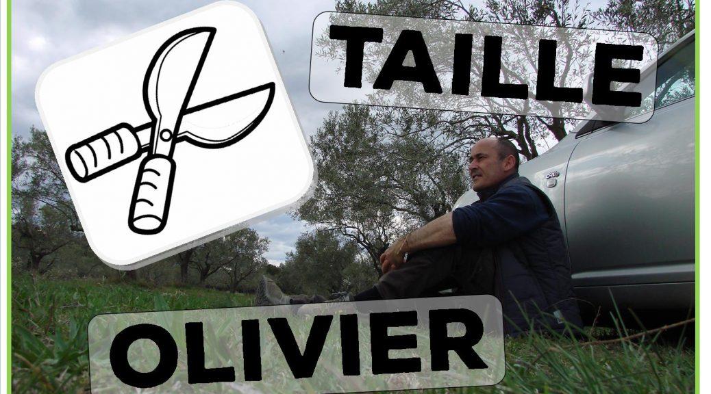 Cours de taille des oliviers - 29-03-2018 - DZprod Jardin