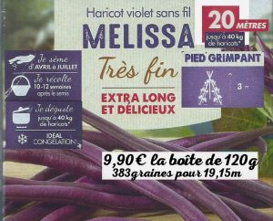 Haricot violet sans fil MELISSA grimpant 3m 40kg 9-90euros Vilmorin