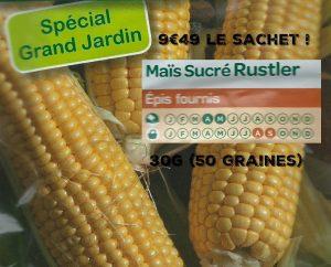 Maïs sucré Rustler - 50 graines - 9euro49 - Vilmorin