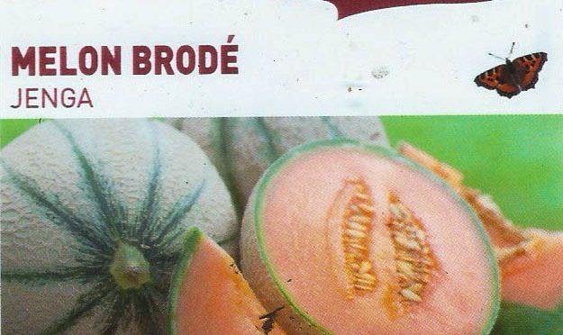 Melon Brodé Jenga