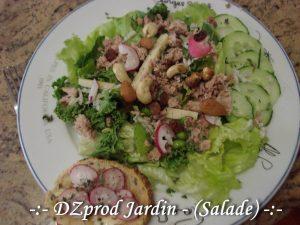Salade du Jardin - dzprod Jardin - 16-05-2018