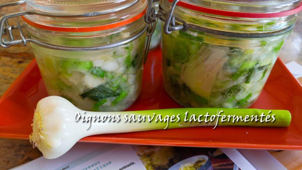 oignons sauvages lactofermentés - la jarre écocitoyenne