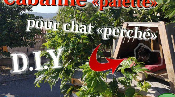cabane dans les arbres pour chats   avec du bois de palette – RRR – DIY – UPCYCLING