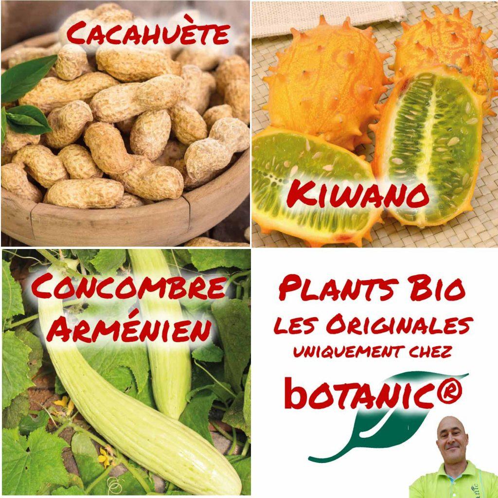 botanic®_Les-originales_cacahuete_Kiwano_concombre-armenien_David-Zicola