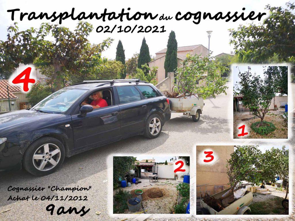 Don-cognassier-le-02-10-2021-Dzprod-Jardin-pour-Anne-et-Marc-association-la-JARRE
